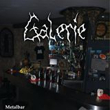 Ried im Innkreis – Galerie – Metalbar